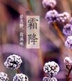 青岛新东方精彩视频
